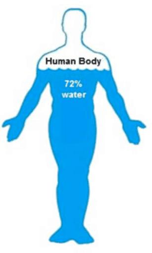 corpul compus din apa